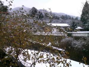 秋月は朝から雪です